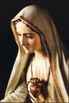 NS - Virgen_de_Fatima